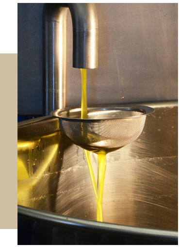 huile olive vierge extra provence domaine de leos
