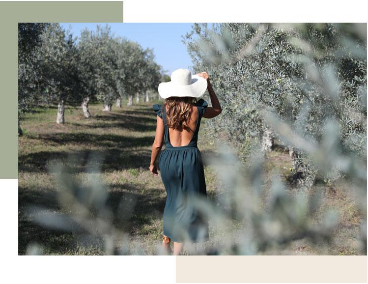 femme qui marche dans un champ d'olivier en provence